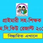primary assistant teacher result 2019